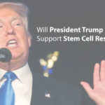 Will President Trump Support Stem Cell Research?