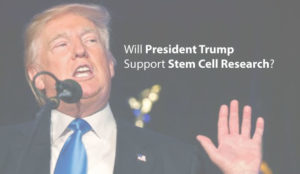 will-president-trump-support-stem-cell-research